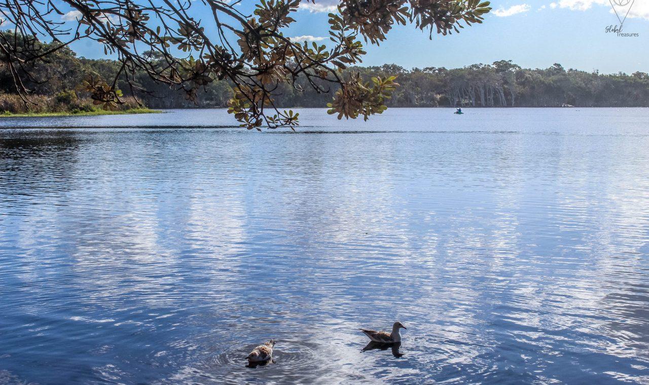 Tea Tree lake en Byron Bay   Global-Treasures.com
